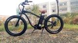 뚱뚱한 타이어를 가진 선택적인 색깔 전기 자전거
