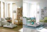 Insiemi esterni moderni del sofà di disegno semplice della mobilia del giardino