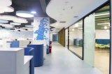 Prémio de design moderno móveis de aço armário de arquivos (PS-YY-MFC-005-Y)