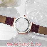 형식 가죽끈 석영 숙녀 손목 시계 (Wy-17018)