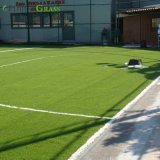 Forte de l'herbe de football de chaume fibre monofilament/ Gazon artificiel de Football
