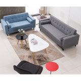 Einfacher Entwurf des Gewebe-Typen Freizeit-Wohnzimmer-Sofa