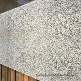Scala grigia bianca del granito del gelsomino per i punti e le colonne montanti