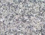 Granit - Blume des Kristall-G3755