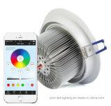 RGBW LED 천장 빛 중단된 원형 Luminaire