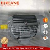 Motor eléctrico trifásico, Y2 Series 6 Pólos 150 cv/110 kw