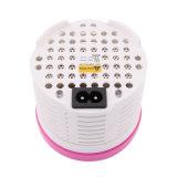 蝸牛な乾燥の補聴器EarmoldのためのAC220Vの電気乾燥のケース