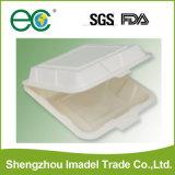 Contenitori di alimento biodegradabili provvisti di cardini a gettare della copertura superiore della casella di pranzo