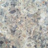 Mattonelle di pavimento rustiche del materiale da costruzione (600X600)