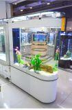 Aquários do tanque de peixes da forma da fonte U da fábrica