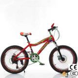 Los niños de 2 ruedas Moto Kid bicicleta para los niños viajen en