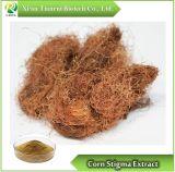 Corn Stigma Extract, Powder 10:1 20:1