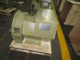 Jl Stf Serien-schwanzloser Drehstromgenerator-Generator