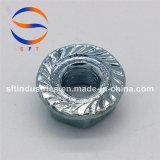 Noix s'accrochante ISO13918 d'individu d'acier inoxydable