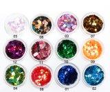 Het Schoonheidsmiddel van de Kunst van de Spijker van de salon DIY schittert Kleurrijke Spijker schittert