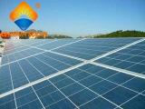 Аттестованная Ce поликристаллическая панель солнечных батарей кремния 260W для солнечной системы