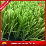 空の高密度フットボールの人工的な総合的な草