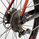 2017 Ventes de bicyclettes de montagne de carbone à chaud avec 22M9000 Vitesse
