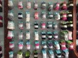 綿またはナイロン縞の人のソックス
