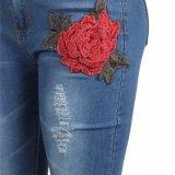Китай Низкая MOQ моды синий xxx xxx леди джинсовой женщина Жан
