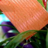 Bayer Material Hoja de policarbonato hueco con UV