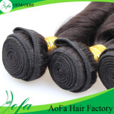 Produto de cabelo Curly malaio da mola de Remy da peruca do cabelo humano