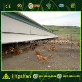 自動家禽はデザイン販売のためのプレハブの養鶏場を収容する