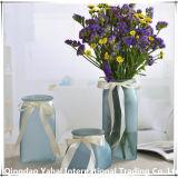 European-Style матового стекла ваза/стеклянный кувшин