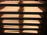 LED 사무실과 시장 사용을%s 선형 고정편 관 빛