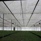 中国の工場卸売の温室のためのプラスチック昆虫のネットの網のプラントカバー