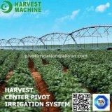 Systeem van de Irrigatie van het Kanon van de Kop van de drijfstang van de sproeier de het Landbouw/Irrigatie van de Spil van het Centrum van het Landbouwbedrijf voor Landbouw