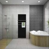 4mm extra-clair trempé pour la maison de verre décoratif radiateur / climatiseur