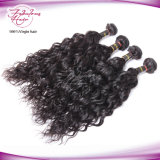Atacado Human Real Mink Natural Wave Virgin Brazilian Hair Extension