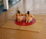 С наступающим новым годом надувных аттракционов костюм сумо