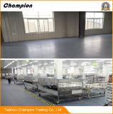 Parkeerterrein, Fabriek, Bevloering van pvc van de Workshop de Homogene, Bevloering van de Workshop van de Vorm van pvc de Vinyl Stabiele