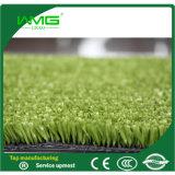 Mat van de Vloer van het Borstgras van het Gras van sporten de Kunstmatige