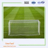 Het Gras van de sport, het Gras van het Gebied van de Voetbal, het Gras van het Voetbal met Ce, SGS Certificaat