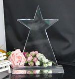 Trofeo di cristallo del premio della stella del ricordo di alta qualità