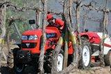 Foton Lovol 50HP Bauernhof-Traktor-Lieferant