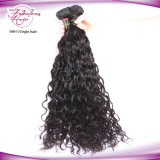 Factory Wholesale Natural Wave Top Grade 100% Virgin Indian Hair
