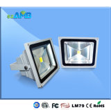 ETL Dlc Certification 30W High Power LED Floodlight