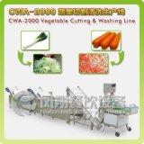 La línea de corte y lavado de verduras y frutas, coles, espinacas