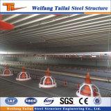 Spätestes Stahlkonstruktion-Geflügel bringen gebildet in China unter
