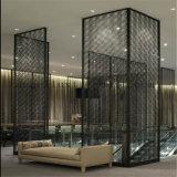 Foshan Factory 201 Salle de style moderne en acier inoxydable de la partition de l'écran de diviseur