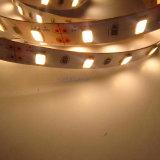1200lm DC12V 12W/M 150LEDs/5m/Reel 60-65lm per striscia del LED 5630 SMD LED