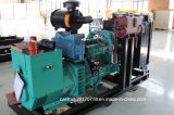 De Generator van het Aardgas van de Slag B3.9g-G45 Cummins van de dieselmotor 30kw 4