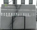 カウンタートップ棒上WorktopsのためのM103季節の風の白い及び灰色の大理石の平板
