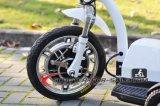 3車輪の電気スクーター500Wブラシレスモーター子供のシートのスクーター
