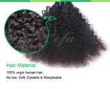 비꼬인 꼬부라진 브라질 인간적인 Virgin 머리 가발