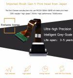 Wenzhou에서 하는 2513 UV 평상형 트레일러 인쇄 기계